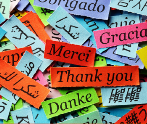 Presentació de les llengües maternes a la Biblioteca Pompeu Fabra